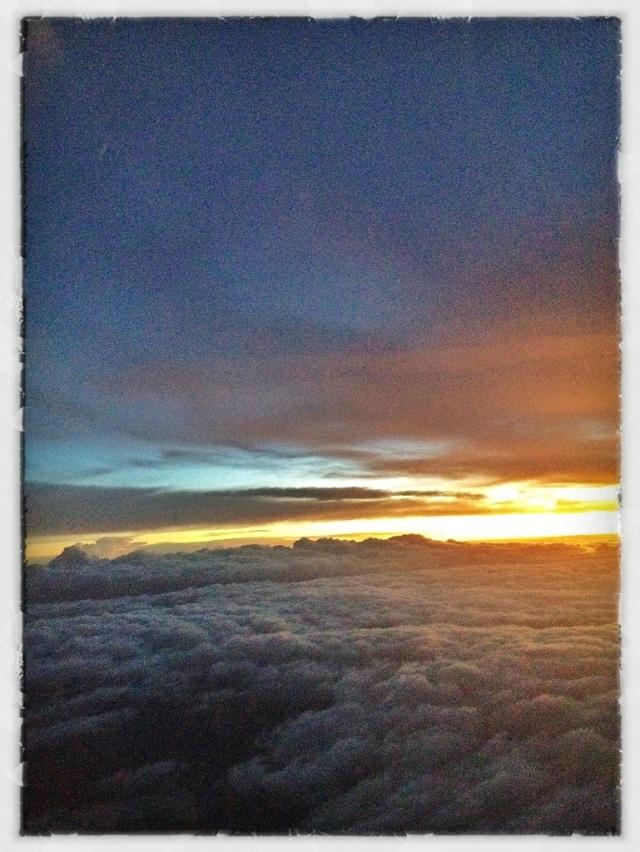 20121109-220915.jpg
